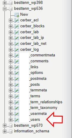 phpmyadmin users